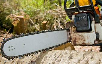 Chainsaw Chain and Mower Blade Sharpening
